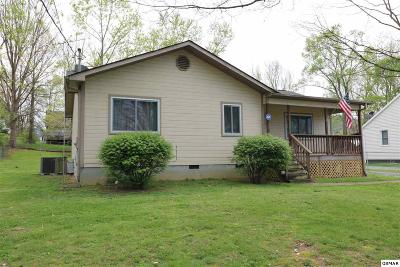 Pigeon Forge Single Family Home For Sale: 209 Valley Dr