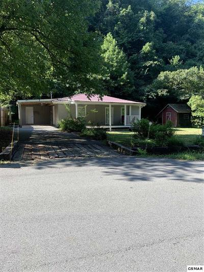 Sevier County Single Family Home For Sale: 814 Gnatty Branch Rd