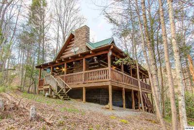 Sevierville Single Family Home For Sale: 2845 Grassy Branch Road