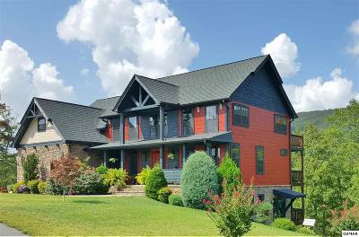 Sevierville Single Family Home For Sale: 2968 Smoky Bluff Trail