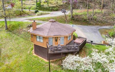 Gatlinburg Single Family Home For Sale: 1107 Villa Ln