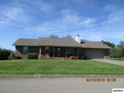 Sevierville Single Family Home For Sale: 1429 Kay View Dr