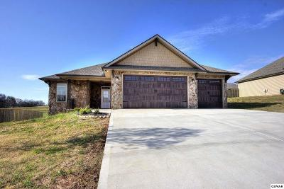 Sevierville Single Family Home For Sale: 2249 Frewin Ct