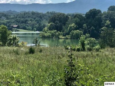 Dandridge TN Residential Lots & Land For Sale: $119,000