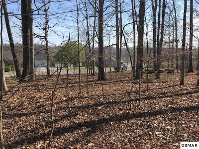 Sevier County Residential Lots & Land For Sale: Lots 23b & 23c Hidden Harbor Lane
