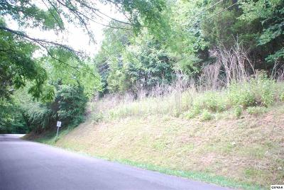 Sevier County Residential Lots & Land For Sale: Lot 17 Easy Street