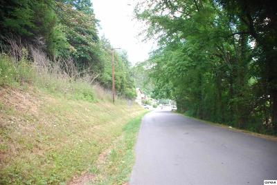 Sevier County Residential Lots & Land For Sale: Lot 18 Easy Street