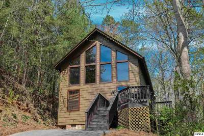 Sevierville Single Family Home For Sale: 2633 Black Walnut Flats