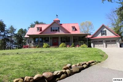 Sevier County, Jefferson County, Cocke County, Blount County, Knox County Single Family Home For Sale: 849 Old Highway 92