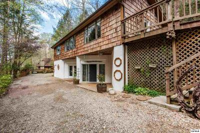 Sevier County, Jefferson County, Cocke County, Blount County, Knox County Single Family Home For Sale: 3129 Hickey Rd