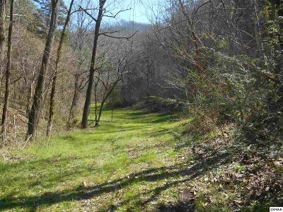 Sevier County Residential Lots & Land For Sale: Misty Mountain Way