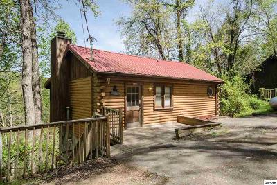 Sevier County, Jefferson County, Cocke County, Blount County, Knox County Single Family Home For Sale: 1716 Ridgecrest Dr