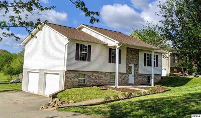 Sevier County, Jefferson County, Cocke County, Blount County, Knox County Single Family Home For Sale: 4619 Clifton Ln