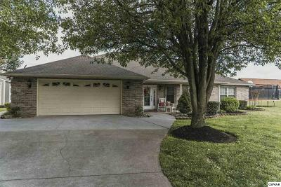 Sevierville TN Single Family Home For Sale: $249,900