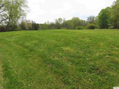 Cocke County Residential Lots & Land For Sale: Skyline