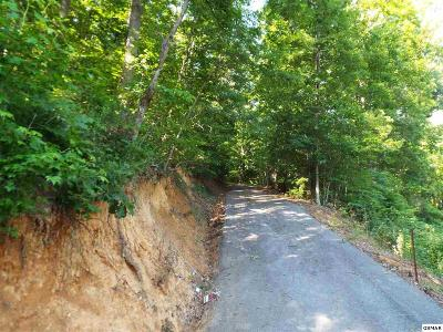 Residential Lots & Land For Sale: Parcel 062.02 Greasy Cove Road