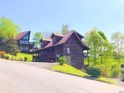 Sevierville Single Family Home For Sale: 1548 Rainbow Ridge Way