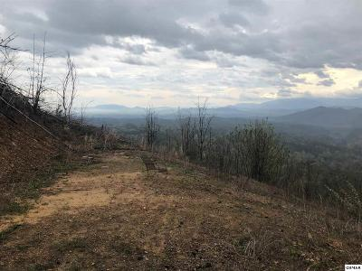 Sevier County Residential Lots & Land For Sale: 2084 Bluff Mountain Road