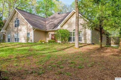 Seymour Single Family Home For Sale: 336 Fallen Oak Circle