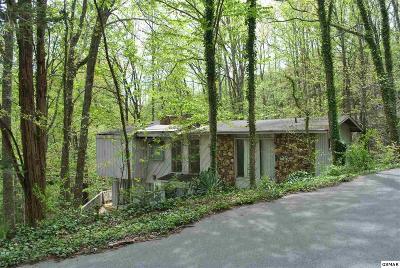 Gatlinburg Single Family Home For Sale: 970 Scenic Trail