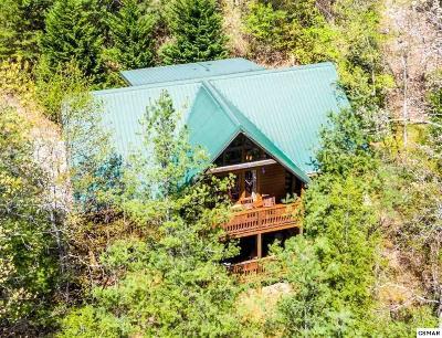 Gatlinburg Single Family Home For Sale: 628 Cub Path Way