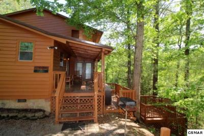 Sevierville Single Family Home For Sale: 1741 Austin View Way