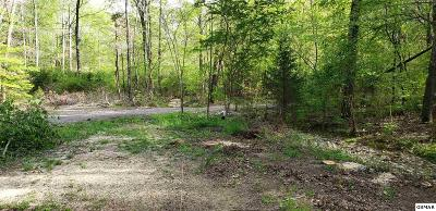Residential Lots & Land For Sale: 144 Paint Rock Trl