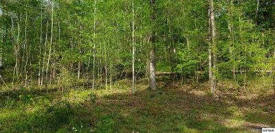 Residential Lots & Land For Sale: 112 Paint Rock Trce
