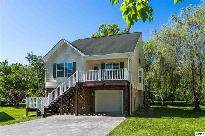 Pigeon Forge Single Family Home For Sale: 812 Plantation Dr
