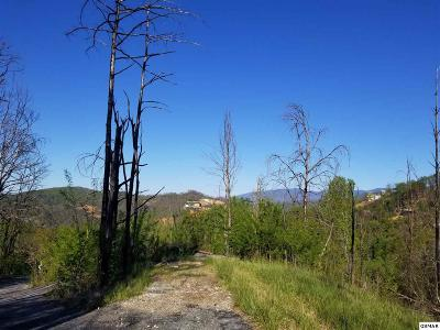 Sevier County Residential Lots & Land For Sale: 415 Red Hawk Way