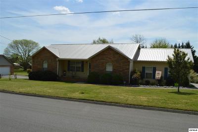 Sevier County Single Family Home For Sale: 525 Devon
