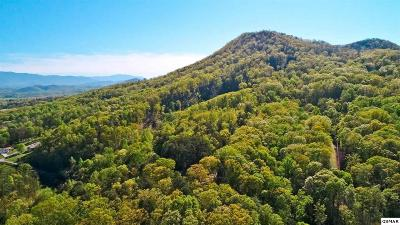 Cocke County Residential Lots & Land For Sale: 6.27 Acres Mountain Trl