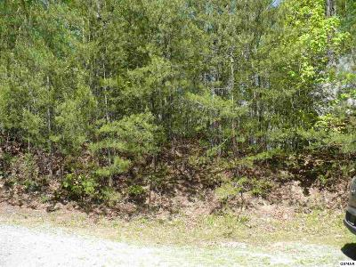 Sevier County Residential Lots & Land For Sale: Lot #10 Teaberry Hill Way