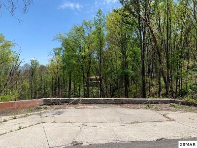 Residential Lots & Land For Sale: 850 Chestnut Drive