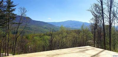 Gatlinburg Single Family Home For Sale: 915 Deer Path Ln