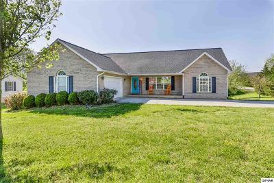 Maryville Single Family Home For Sale: 4237 Pea Ridge Road