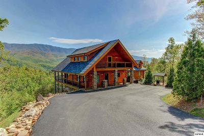 Gatlinburg Single Family Home For Sale: 1010 Mathis Hollow Road