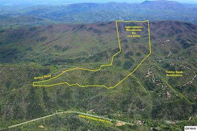 Sevier County Residential Lots & Land For Sale: Par 089 Hickey Road