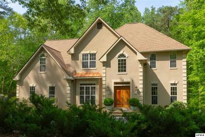 Sevierville Single Family Home For Sale: 1625 Valley Woods Dr