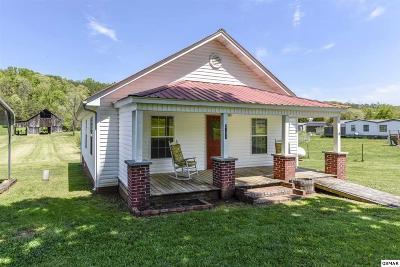 Dandridge Single Family Home For Sale: 2021 Sockless Rd