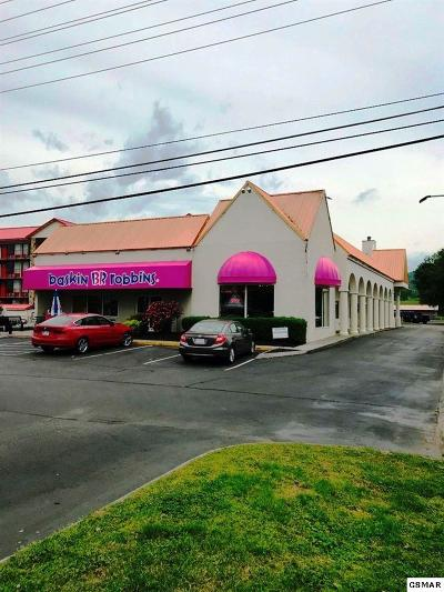 Pigeon Forge Commercial For Sale: 3270 Parkway