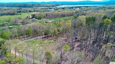 Baneberry Residential Lots & Land For Sale: 2.6 Acres Shady Hollow Rd