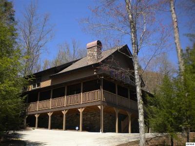 Sevierville Single Family Home For Sale: 2330 Bogle Spring Loop