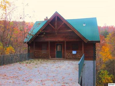 Gatlinburg Single Family Home For Sale: 1341 N Baden Dr