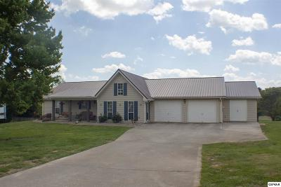 Dandridge Single Family Home For Sale: 255 Battlefield Drive