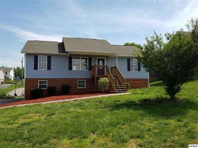 Dandridge Single Family Home For Sale: 564 Joshua Dr