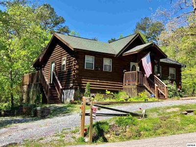 Sevierville Single Family Home For Sale: 1664 Scenic Woods Way