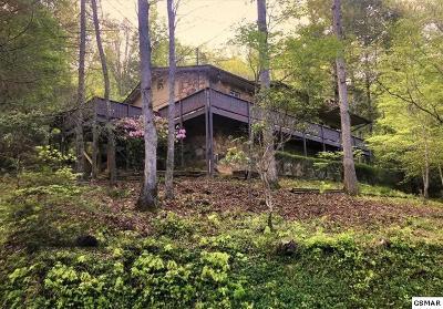 Gatlinburg Single Family Home For Sale: 328 Gatlin Drive