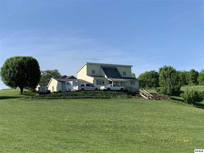 Dandridge Single Family Home For Sale: 153 Golf View Blvd