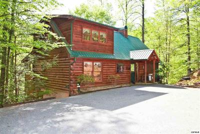Sevierville Single Family Home For Sale: 801 Bear Run Way
